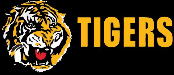 bribie island tigers football club logo